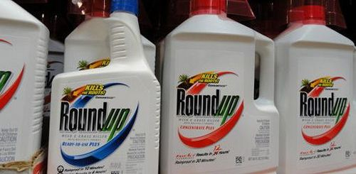 Is Roundup Safe to Use?